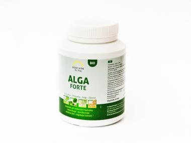Alga Forte 120 tablet bio kombinace řas a zázvoru