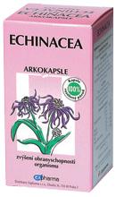 Arkokapsle Echinacea.45
